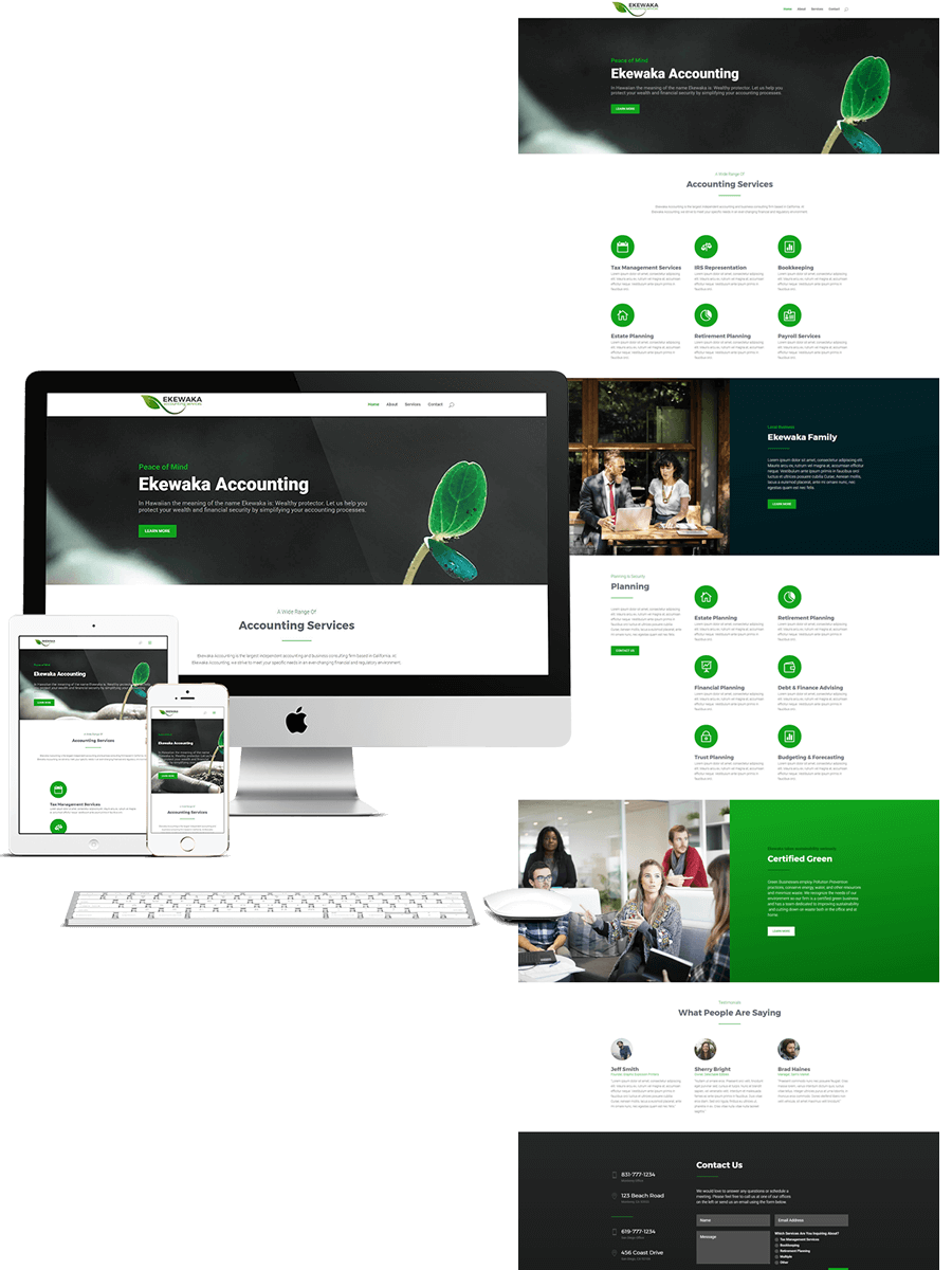 Ekewaka professional business template