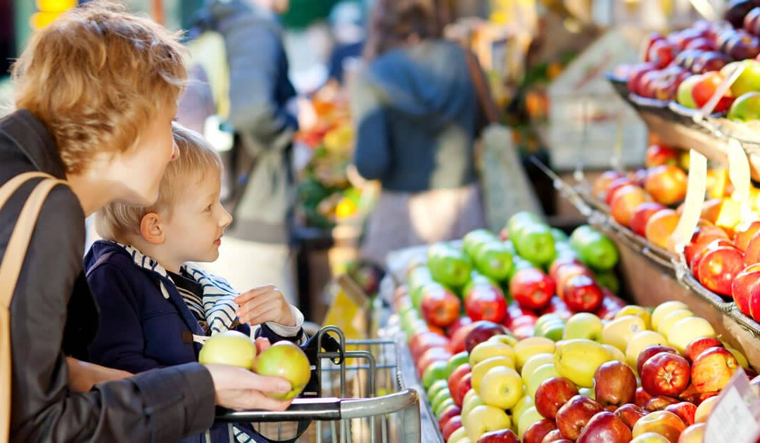 Where to Find Cheap Groceries: A Comparison of Stores