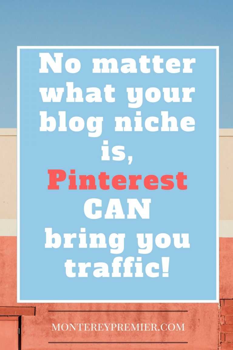 no matter what your blog niche is, Pinterest CAN bring you traffic!