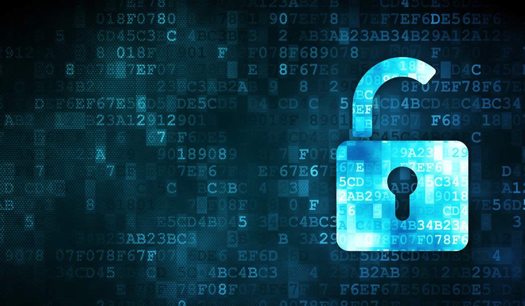 Is Your Business Network Vulnerable to a Data Breach?