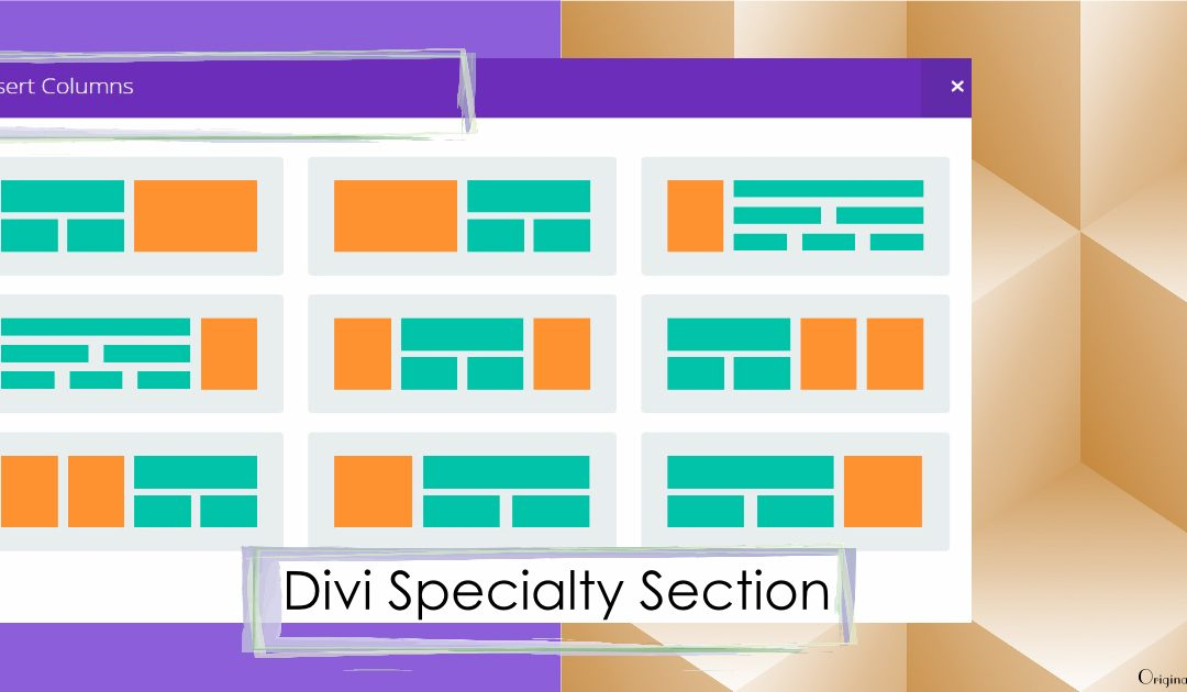 Divi Specialty Section Layout