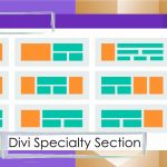 Divi Specialty Section