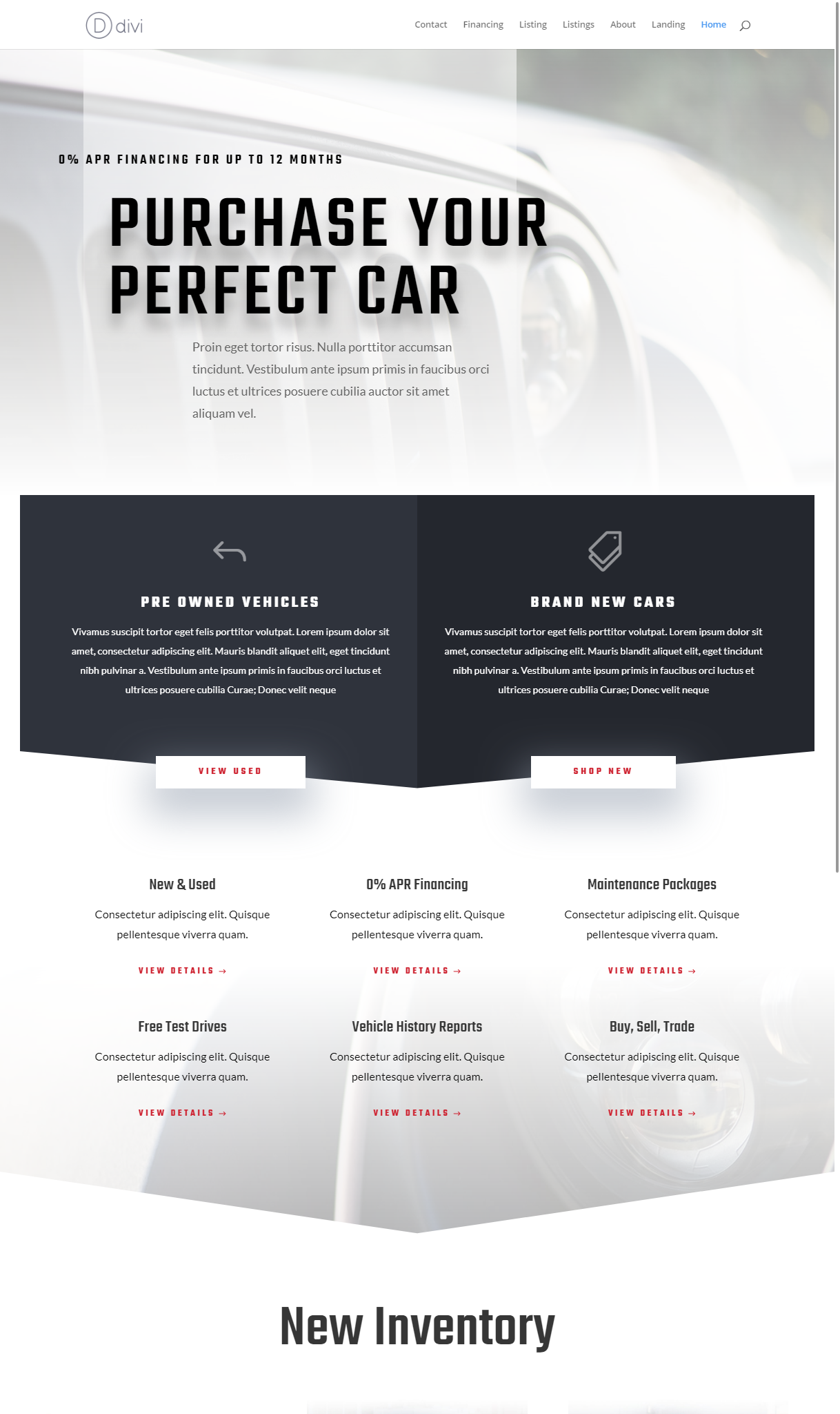 The Coach professional business template