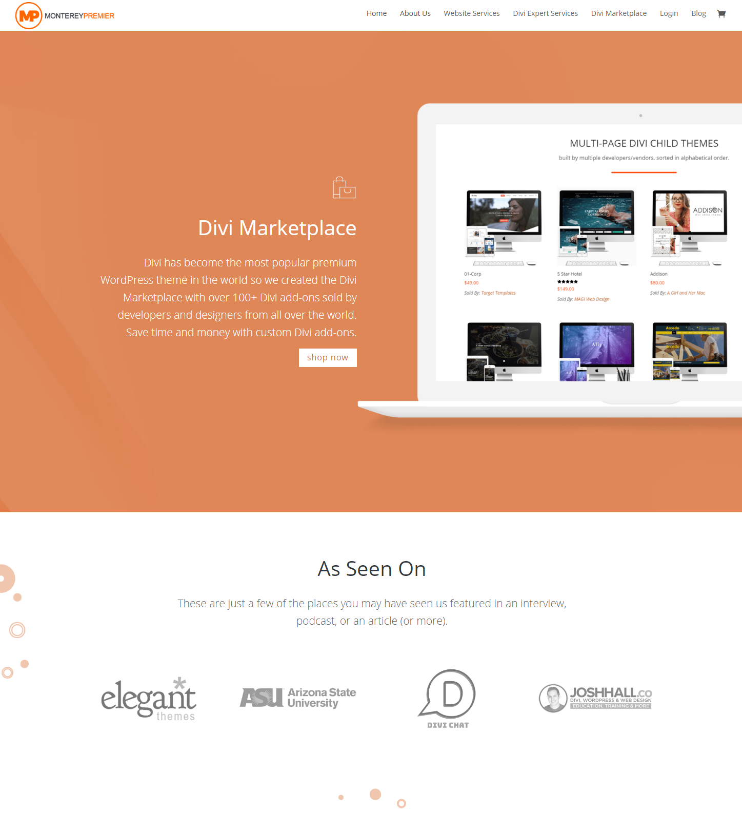 Monterey Premier - Explain what The Divi Marketplace Is And Who It Is For (a)